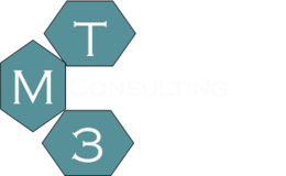 TM3 Consulting - Business Consulting